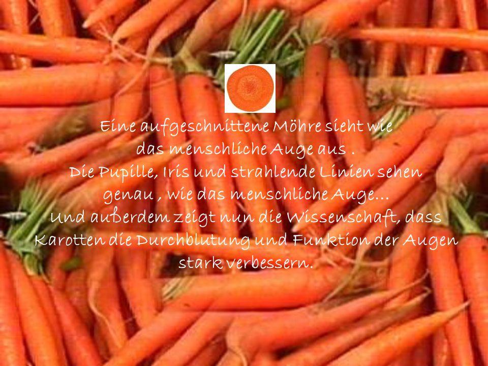 Orangen, Grapefruits und andere Zitrusfrüchte sehen aus wie die Milchdrüsen der weiblichen Brust.