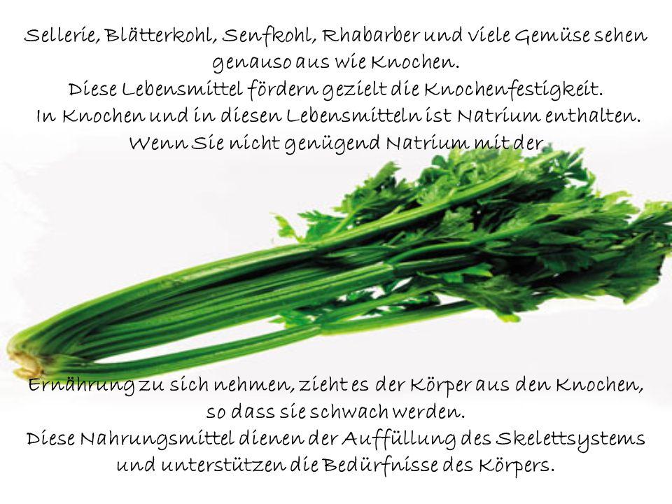 Sellerie, Blätterkohl, Senfkohl, Rhabarber und viele Gemüse sehen genauso aus wie Knochen.