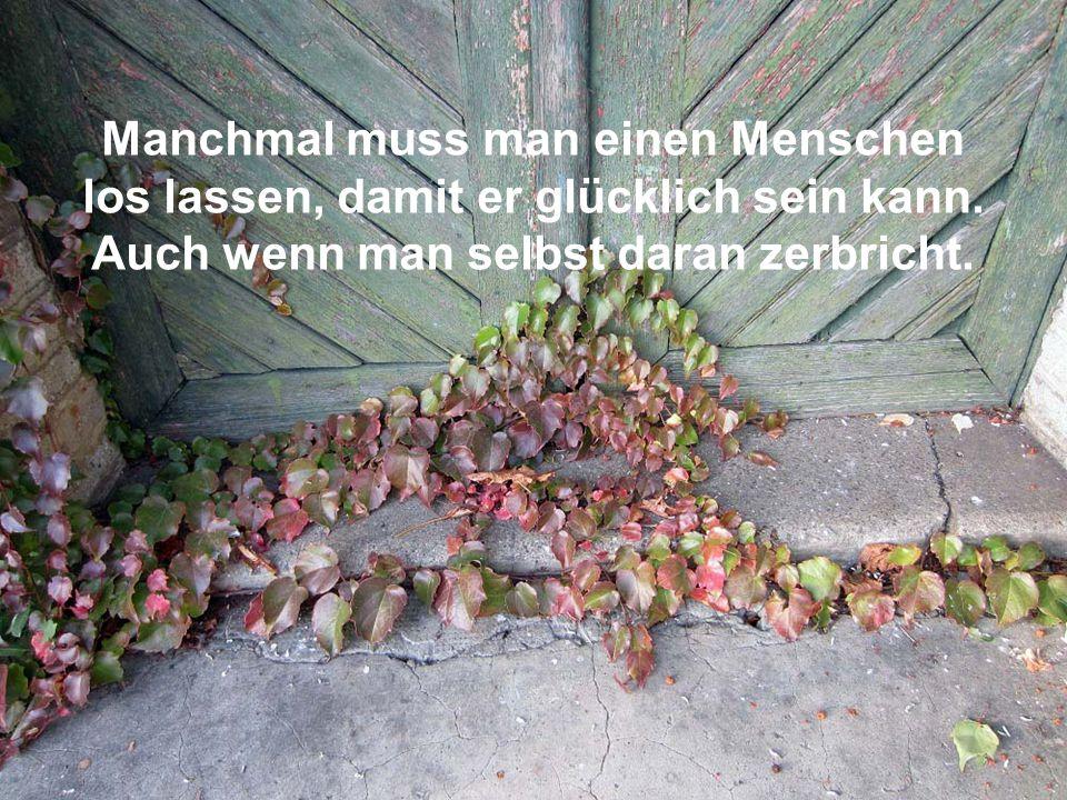Momo´s Herbst Kabriolen Musik Lovland Nocturne