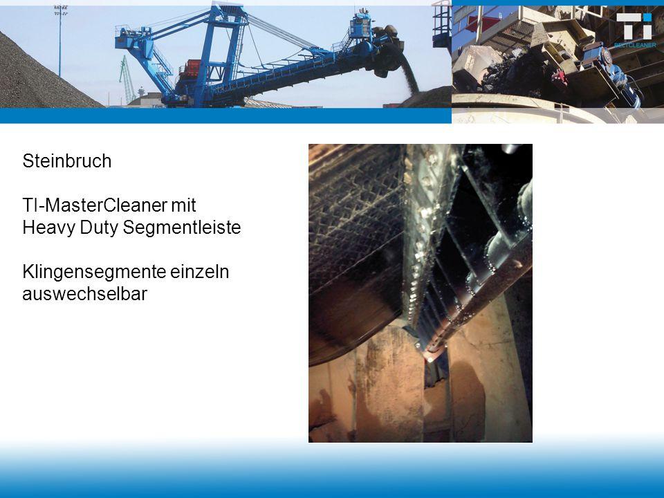Steinbruch TI-MasterCleaner mit Heavy Duty Segmentleiste Klingensegmente einzeln auswechselbar