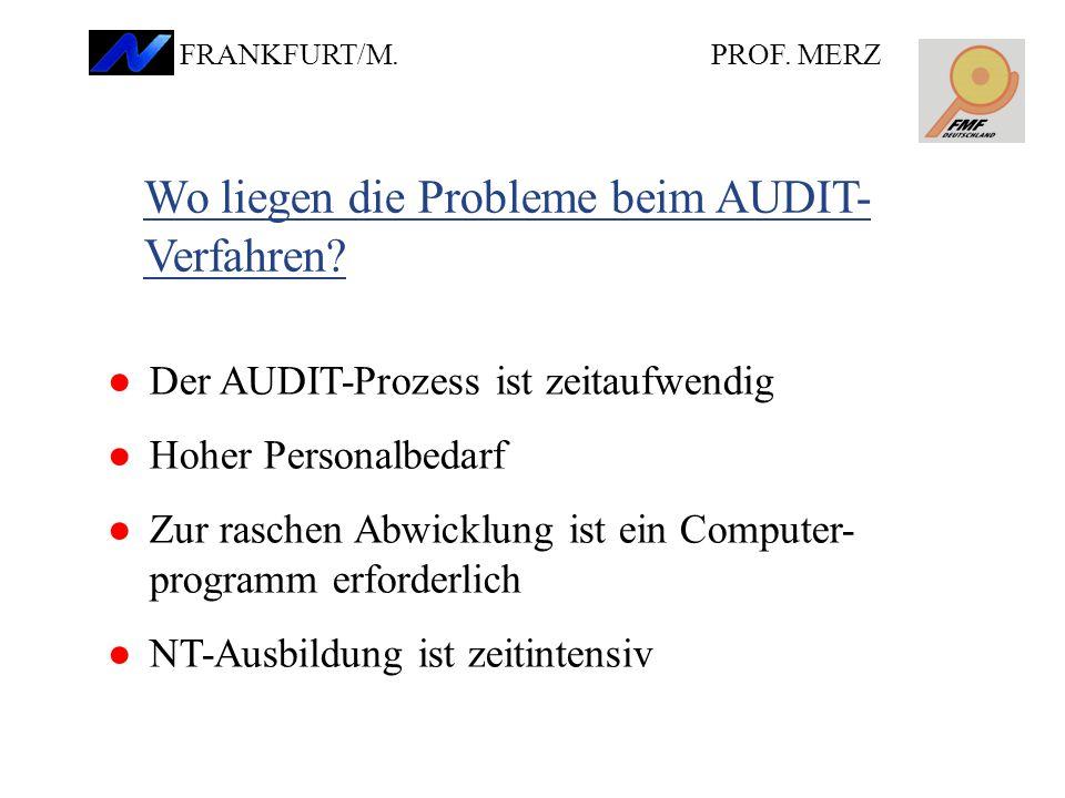 Wo liegen die Probleme beim AUDIT- Verfahren.PROF.
