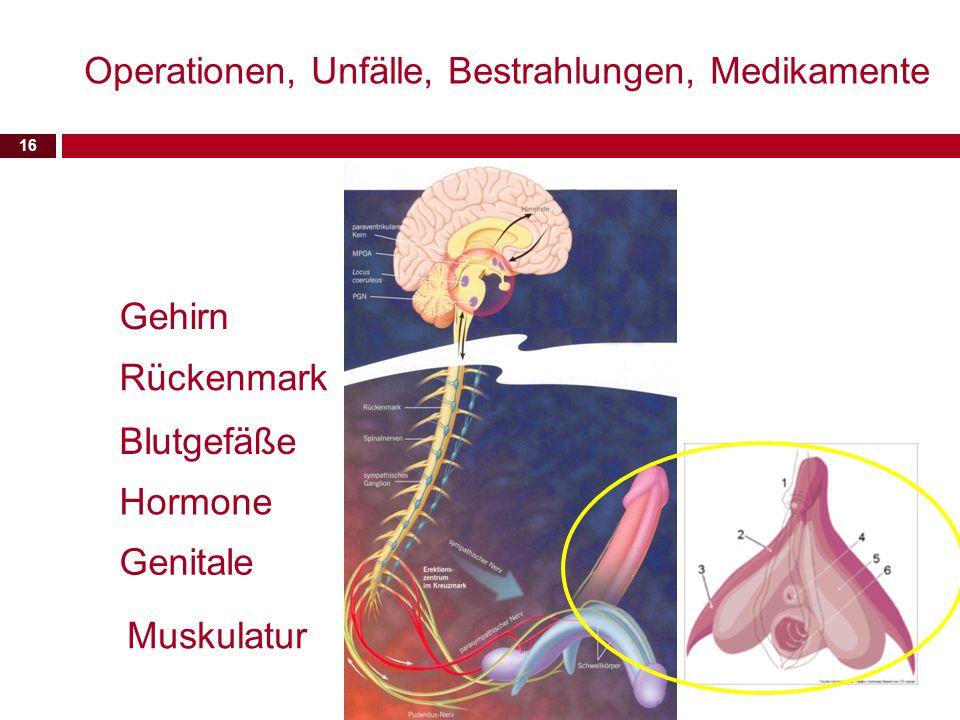 16 Gehirn Rückenmark Hormone Blutgefäße Genitale Operationen, Unfälle, Bestrahlungen, Medikamente Muskulatur