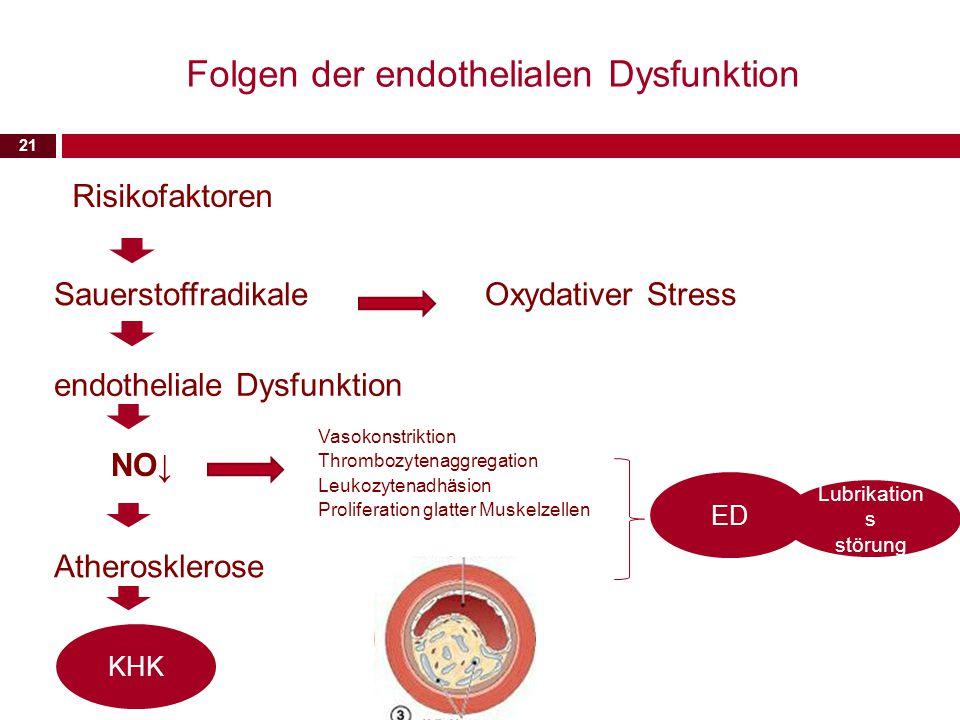 21 Folgen der endothelialen Dysfunktion Risikofaktoren Sauerstoffradikale endotheliale Dysfunktion NO↓ Atherosklerose Oxydativer Stress Vasokonstrikti