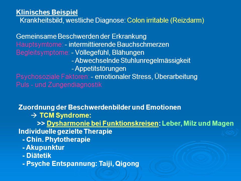 Klinisches Beispiel Krankheitsbild, westliche Diagnose: Colon irritable (Reizdarm) Gemeinsame Beschwerden der Erkrankung Hauptsymtome: - intermittiere
