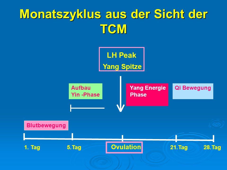 Monatszyklus aus der Sicht der TCM Blutbewegung 1. Tag 5.Tag Ovulation 21.Tag 28.Tag Aufbau Yin -Phase Yang Spitze Yang Energie Phase Qi Bewegung LH P
