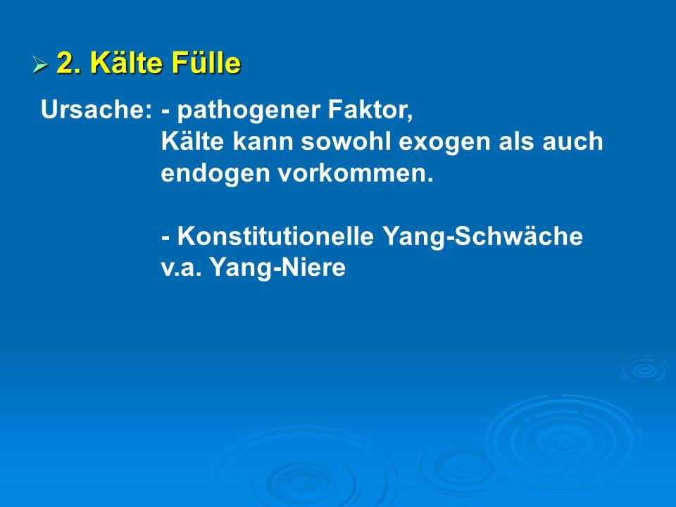  2. Kälte Fülle Ursache: - pathogener Faktor, Kälte kann sowohl exogen als auch endogen vorkommen. - Konstitutionelle Yang-Schwäche v.a. Yang-Niere