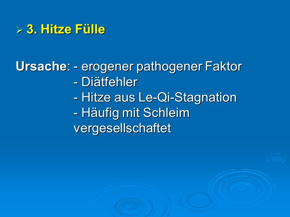  3. Hitze Fülle Ursache: - erogener pathogener Faktor - Diätfehler - Hitze aus Le-Qi-Stagnation - Häufig mit Schleim vergesellschaftet