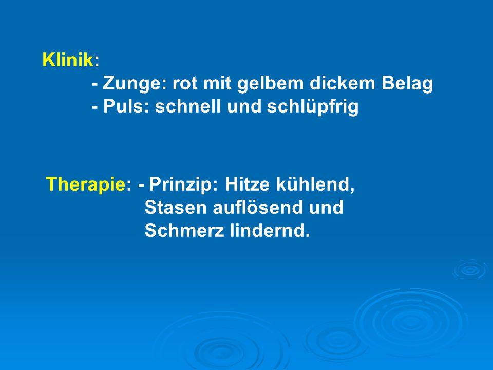 Klinik: - Zunge: rot mit gelbem dickem Belag - Puls: schnell und schlüpfrig Therapie: - Prinzip: Hitze kühlend, Stasen auflösend und Schmerz lindernd.