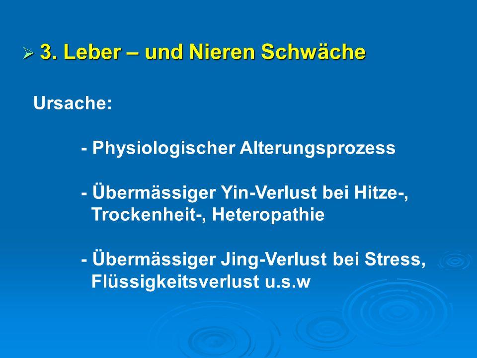  3. Leber – und Nieren Schwäche Ursache: - Physiologischer Alterungsprozess - Übermässiger Yin-Verlust bei Hitze-, Trockenheit-, Heteropathie - Überm