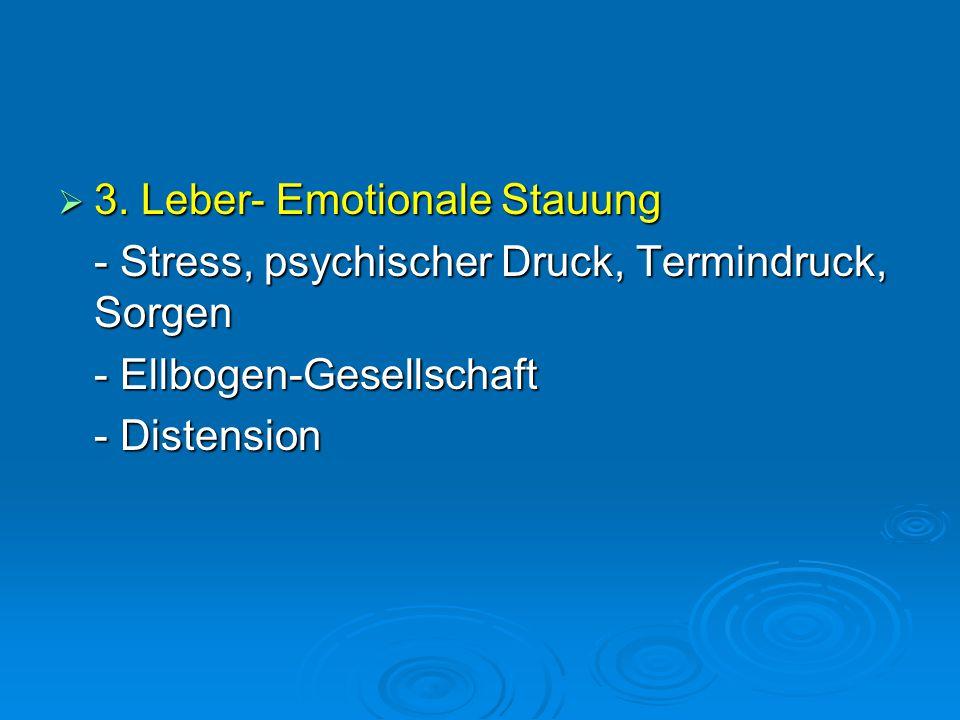  3. Leber- Emotionale Stauung - Stress, psychischer Druck, Termindruck, Sorgen - Ellbogen-Gesellschaft - Distension