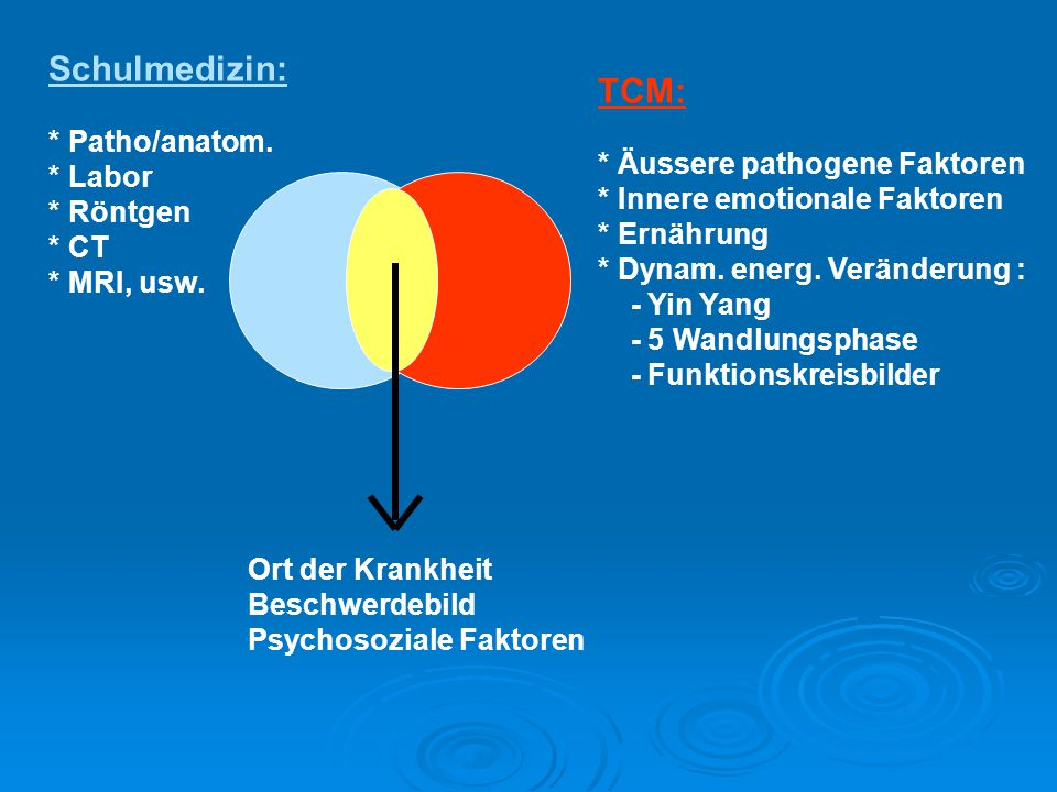 Allgemeine Therapieprinzipien  1.