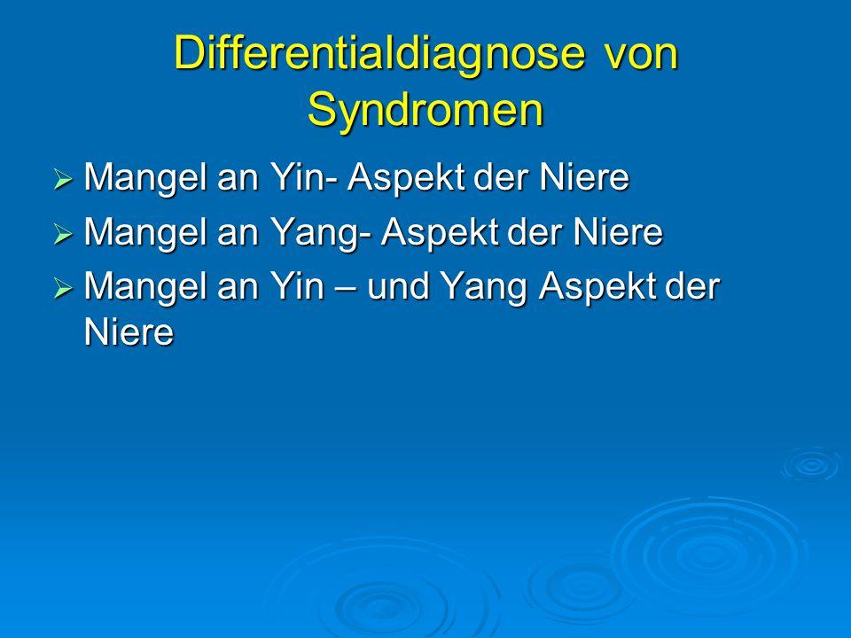Differentialdiagnose von Syndromen  Mangel an Yin- Aspekt der Niere  Mangel an Yang- Aspekt der Niere  Mangel an Yin – und Yang Aspekt der Niere