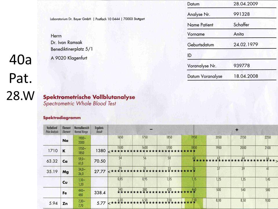 Laborbefund BB Diff.-BB Einsenstatus Serumelektrolyte