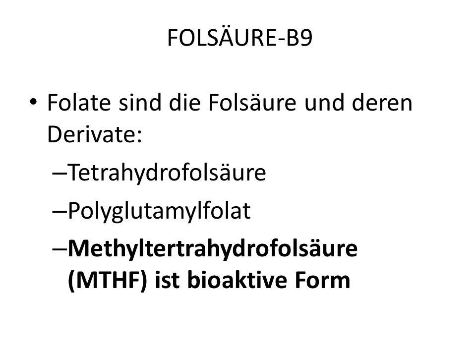 FOLSÄURE-B9 Co-Fakoren zur Synthese des aktiven (MTHF) Folsäurekomplexes in der Leber – Cobalamin-B12 Veganer – Niacin-B3 – Pyridoxin-B6Histaminstoffw