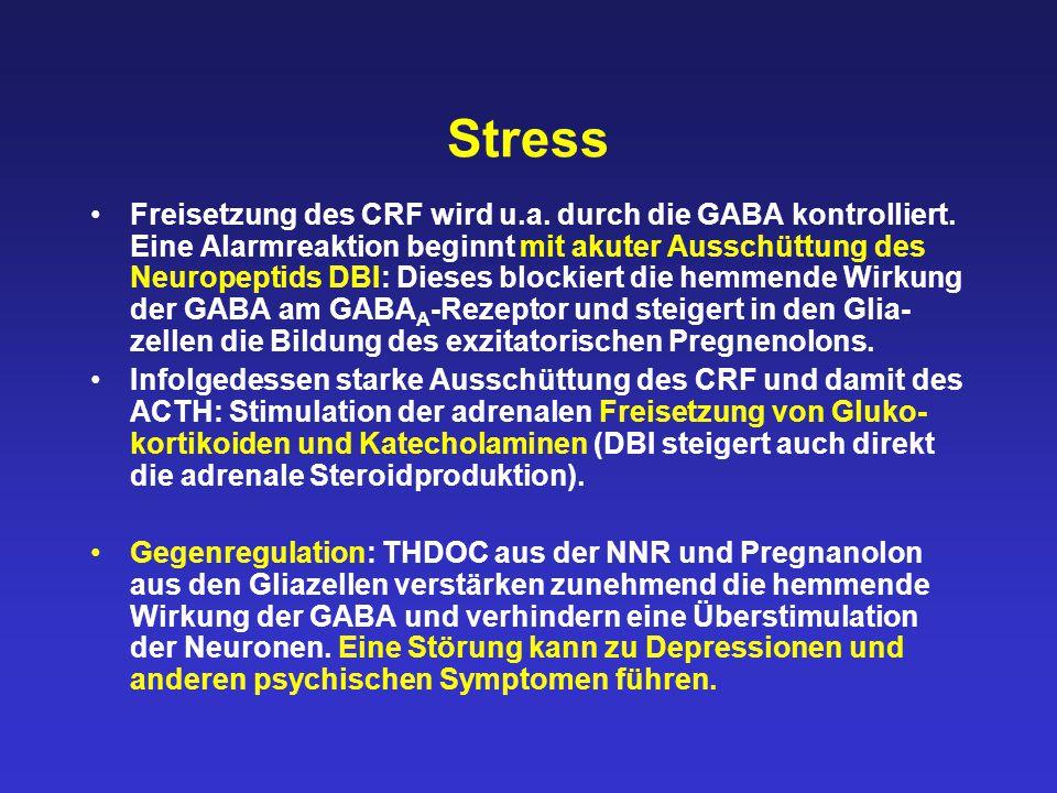 Stress Freisetzung des CRF wird u.a. durch die GABA kontrolliert. Eine Alarmreaktion beginnt mit akuter Ausschüttung des Neuropeptids DBI: Dieses bloc