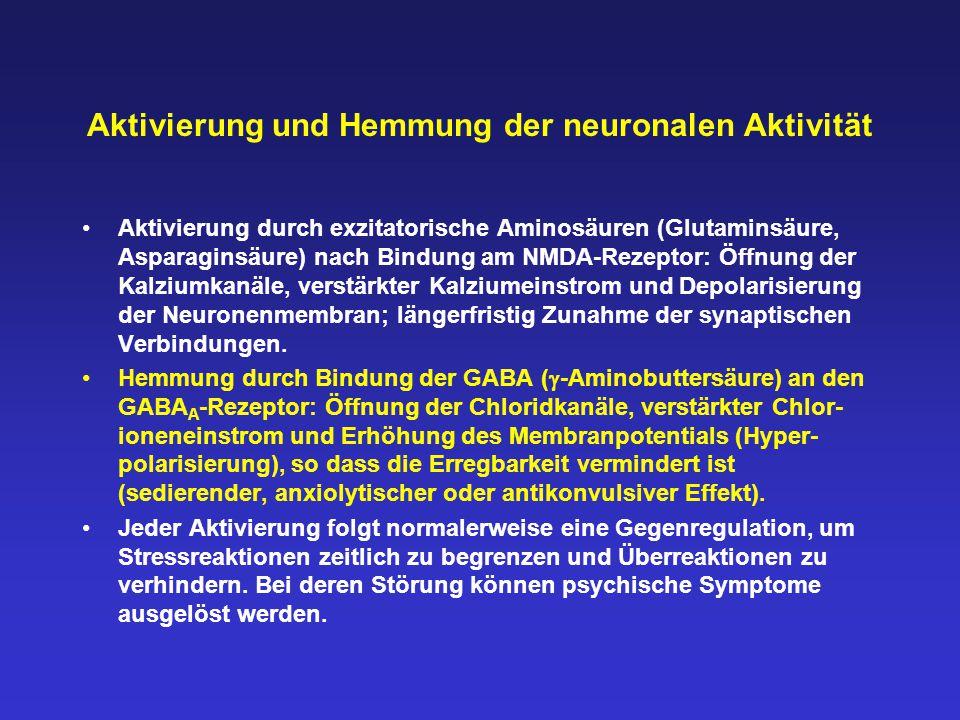 Aktivierung und Hemmung der neuronalen Aktivität Aktivierung durch exzitatorische Aminosäuren (Glutaminsäure, Asparaginsäure) nach Bindung am NMDA-Rez