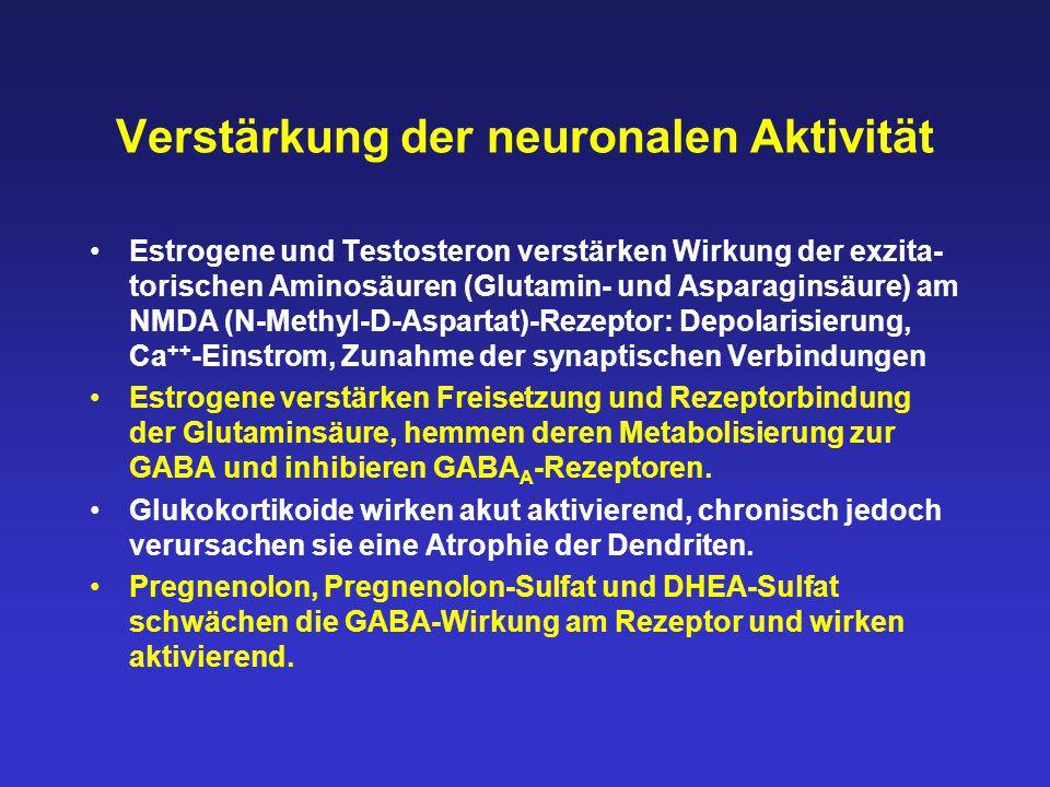 Verstärkung der neuronalen Aktivität Estrogene und Testosteron verstärken Wirkung der exzita- torischen Aminosäuren (Glutamin- und Asparaginsäure) am