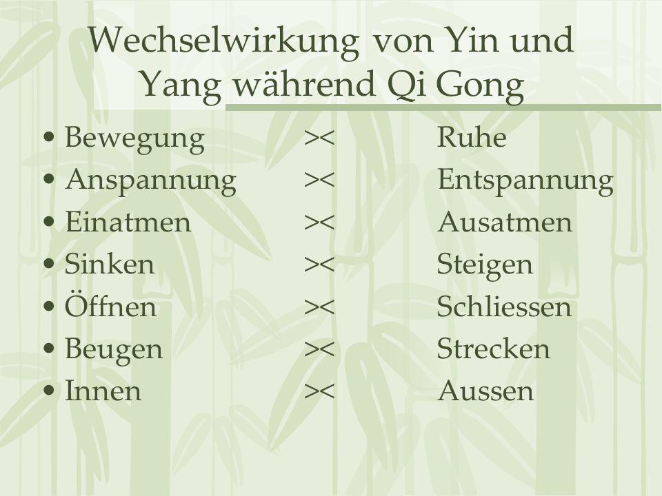 Wechselwirkung von Yin und Yang während Qi Gong Bewegung ><Ruhe Anspannung >< Entspannung Einatmen >< Ausatmen Sinken >< Steigen Öffnen >< Schliessen