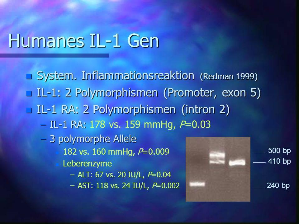 Humanes IL-1 Gen n System.