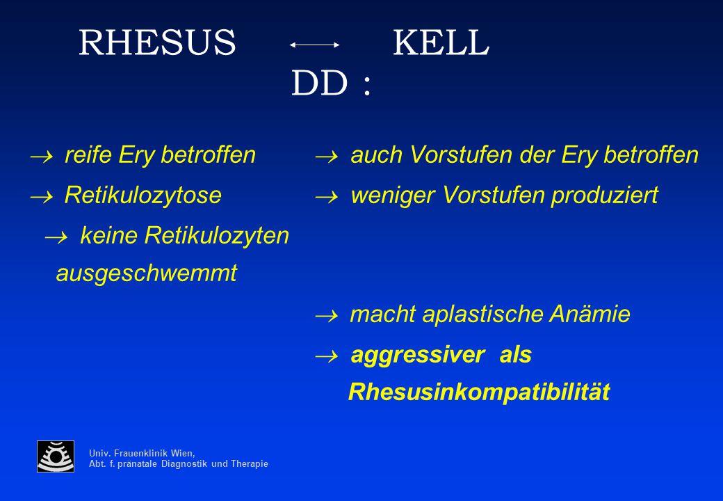 Univ. Frauenklinik Wien, Abt. f. pränatale Diagnostik und Therapie RHESUS KELL DD :  reife Ery betroffen  auch Vorstufen der Ery betroffen  Reti