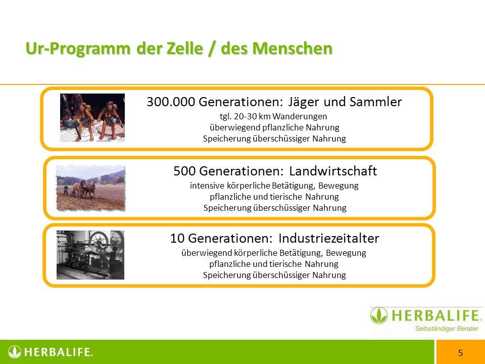 5 300.000 Generationen: Jäger und Sammler tgl.