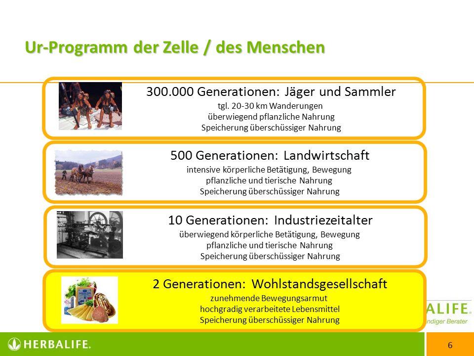 6 300.000 Generationen: Jäger und Sammler tgl.
