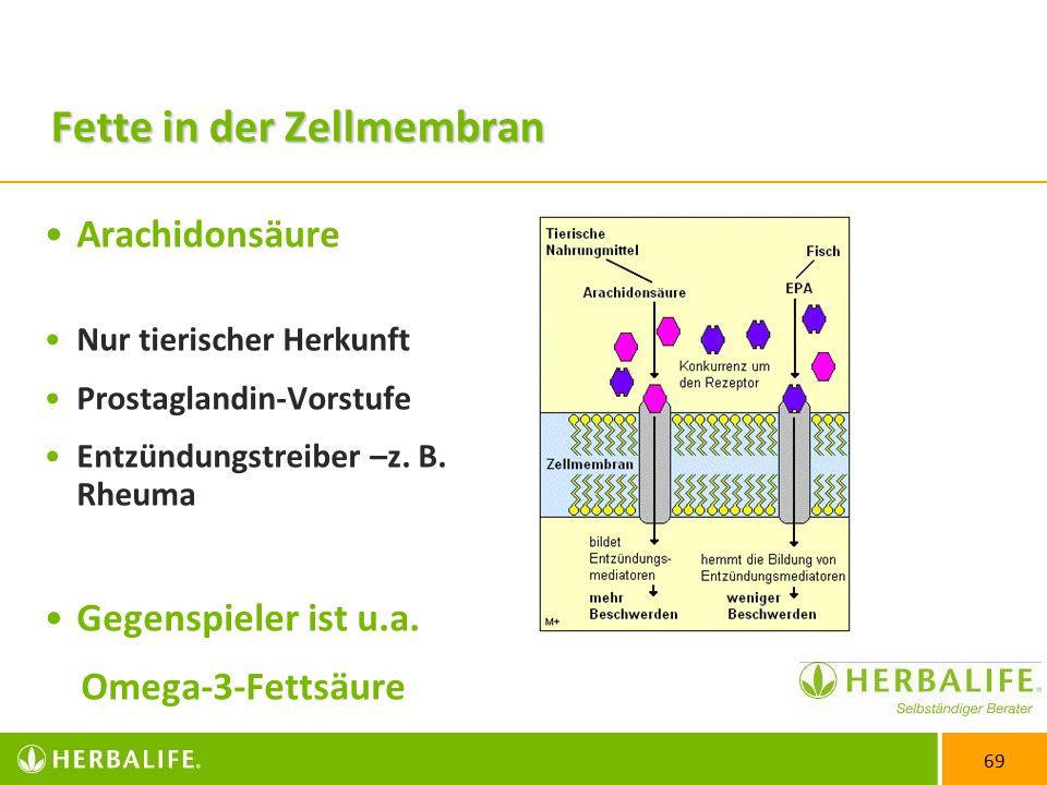 69 Fette in der Zellmembran Arachidonsäure Nur tierischer Herkunft Prostaglandin-Vorstufe Entzündungstreiber –z.