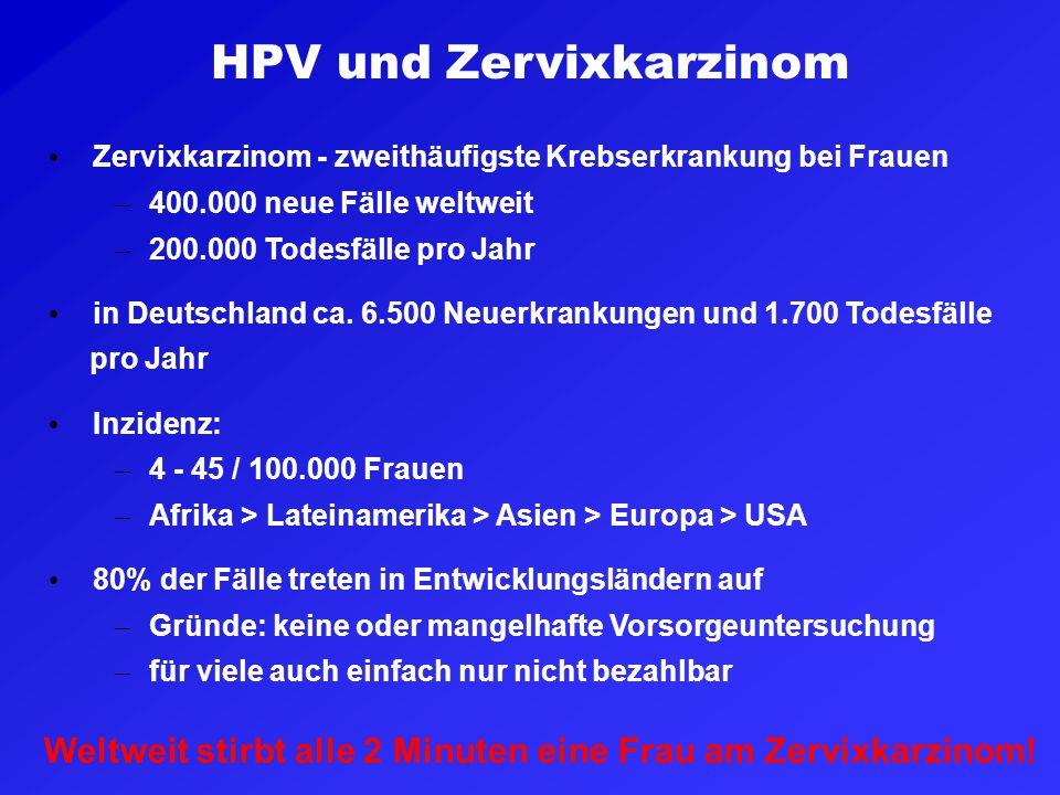 HPV und Zervixkarzinom Zervixkarzinom - zweithäufigste Krebserkrankung bei Frauen – 400.000 neue Fälle weltweit – 200.000 Todesfälle pro Jahr in Deuts