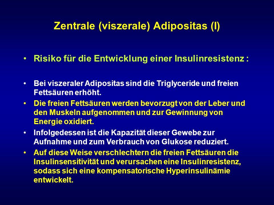 Zentrale (viszerale) Adipositas (I) Risiko für die Entwicklung einer Insulinresistenz : Bei viszeraler Adipositas sind die Triglyceride und freien Fet