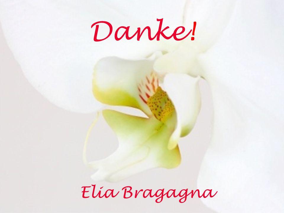 Danke! Elia Bragagna