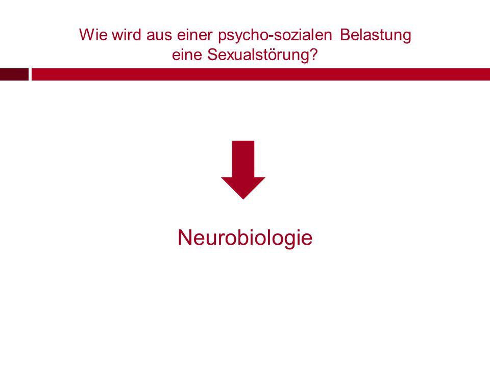 Neurobiologie & Sexualstörungen neurobiologische Psychotherapieforschung zeigt uns wie aus Erfahrungen (Gehirn)Strukturen werden U.