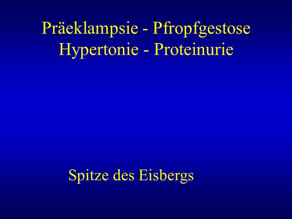 Präeklampsie - Pfropfgestose Hypertonie - Proteinurie Spitze des Eisbergs