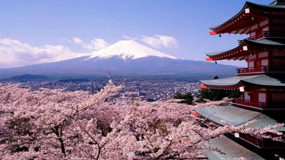 Der japanische Kirschblüten-Baum ist der Baum, welcher sich am meisten mit der japanischen Kultur identifiziert. Die Japaner feiern die Blüte der Kirs