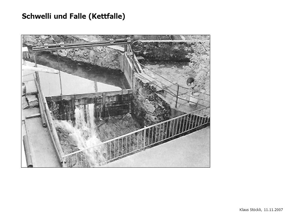 Schwelli und Falle (Kettfalle) Klaus Stöckli, 11.11.2007
