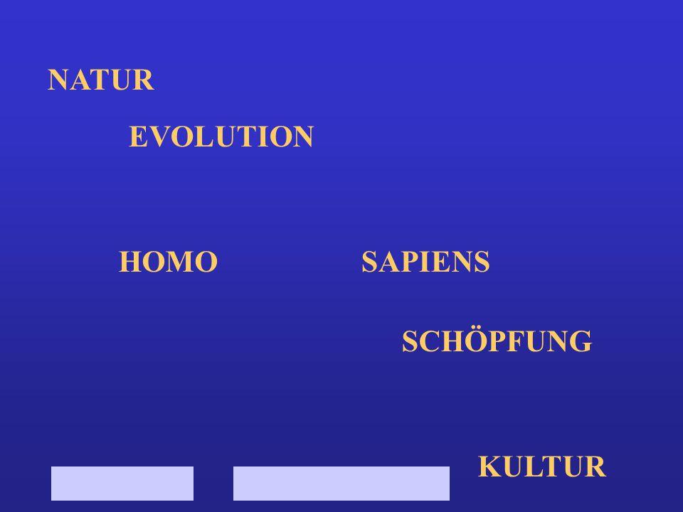 NATUR EVOLUTION HOMO SCHÖPFUNG KULTUR SAPIENS