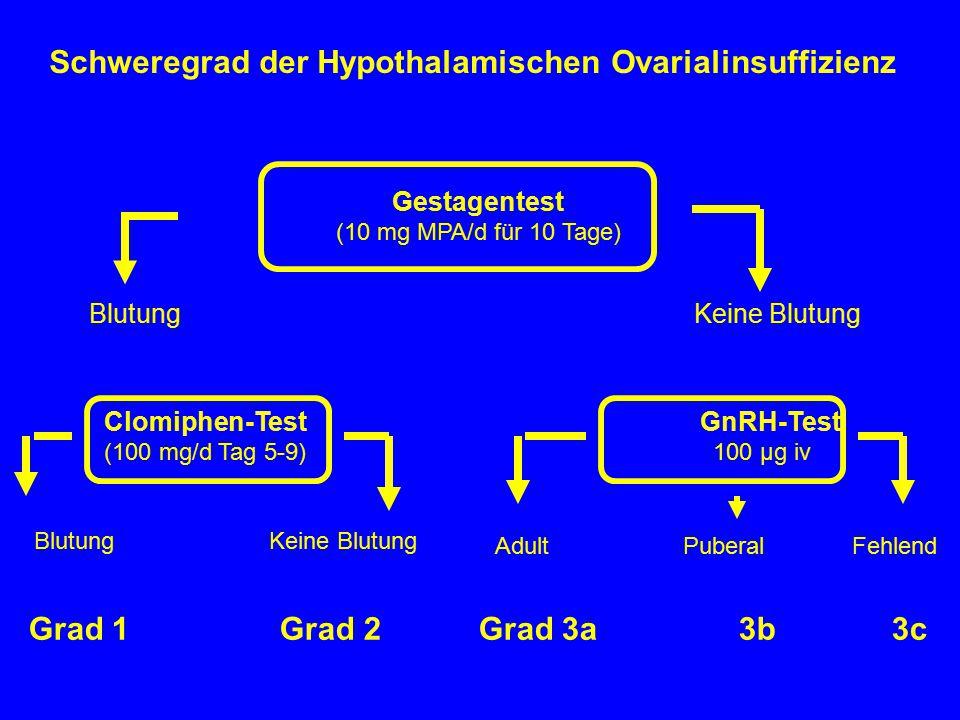 Schweregrad der Hypothalamischen Ovarialinsuffizienz Gestagentest (10 mg MPA/d für 10 Tage) Blutung Keine Blutung Clomiphen-Test GnRH-Test (100 mg/d T