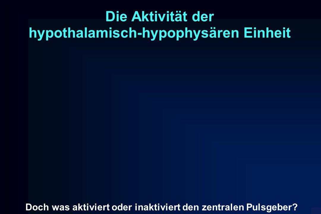 Die Aktivität der hypothalamisch-hypophysären Einheit Doch was aktiviert oder inaktiviert den zentralen Pulsgeber?