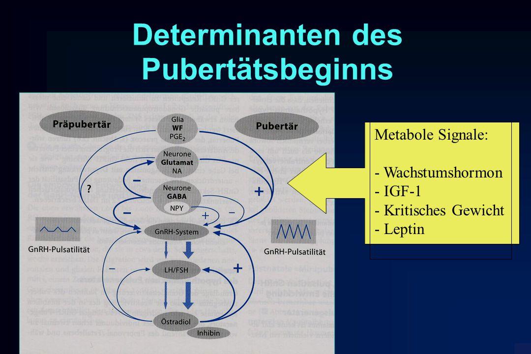 Determinanten des Pubertätsbeginns Metabole Signale: - Wachstumshormon - IGF-1 - Kritisches Gewicht - Leptin