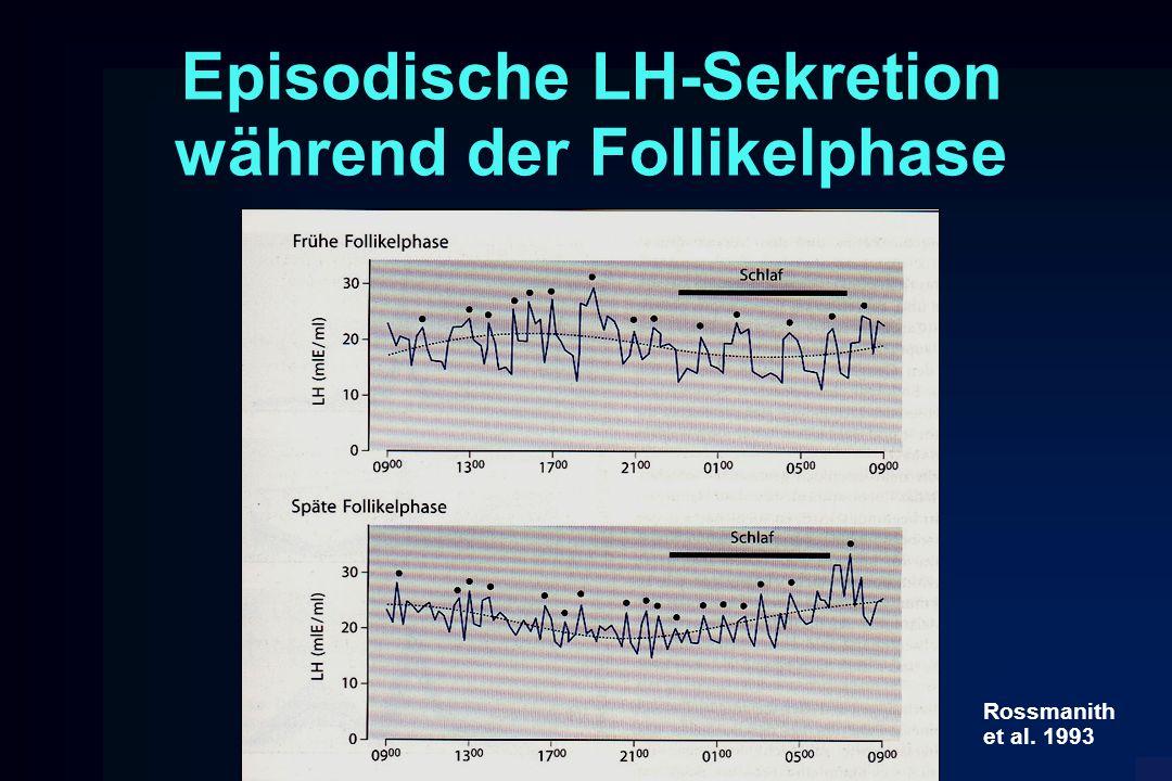 Episodische LH-Sekretion während der Follikelphase Rossmanith et al. 1993
