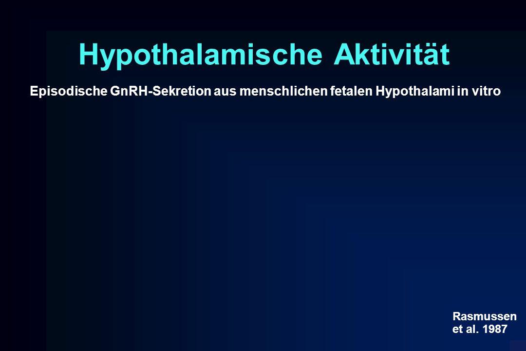 Hypothalamische Aktivität Episodische GnRH-Sekretion aus menschlichen fetalen Hypothalami in vitro Rasmussen et al. 1987