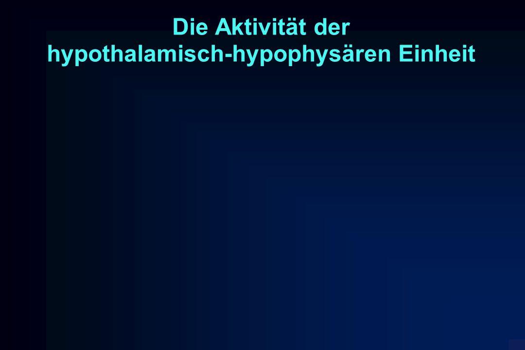 Die Aktivität der hypothalamisch-hypophysären Einheit