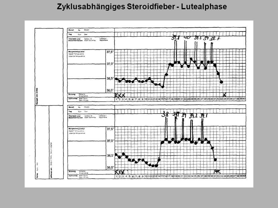 Zyklusabhängiges Steroidfieber - Lutealphase