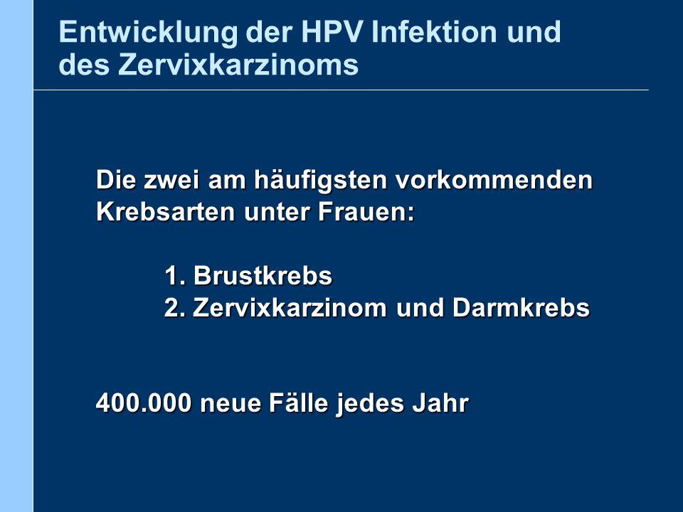Genese des Zervixkarzinoms Normales Epithel HPV-Infektion Persist.