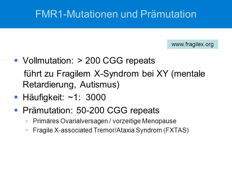 FMR1-Mutationen und Prämutation  Vollmutation: > 200 CGG repeats führt zu Fragilem X-Syndrom bei XY (mentale Retardierung, Autismus)  Häufigkeit: ~1: 3000  Prämutation: 50-200 CGG repeats Primäres Ovarialversagen / vorzeitige Menopause Fragile X-associated Tremor/Ataxia Syndrom (FXTAS) www.fragilex.org