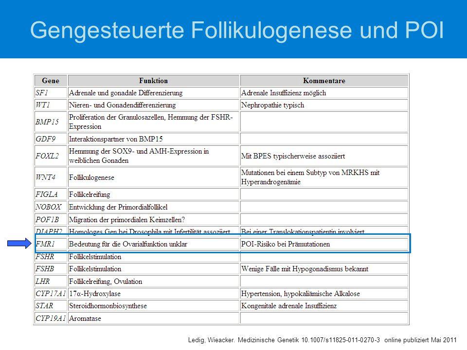 Gengesteuerte Follikulogenese und POI Ledig, Wieacker. Medizinische Genetik 10.1007/s11825-011-0270-3 online publiziert Mai 2011