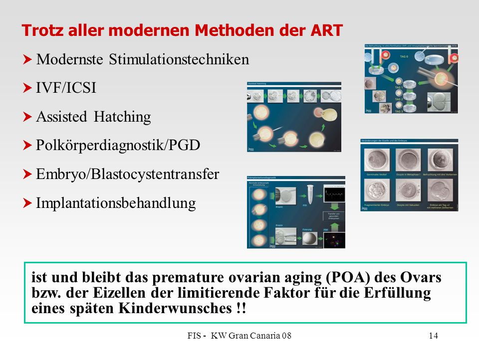 FIS - KW Gran Canaria 0814 Trotz aller modernen Methoden der ART  Modernste Stimulationstechniken  IVF/ICSI  Assisted Hatching  Polkörperdiagnosti