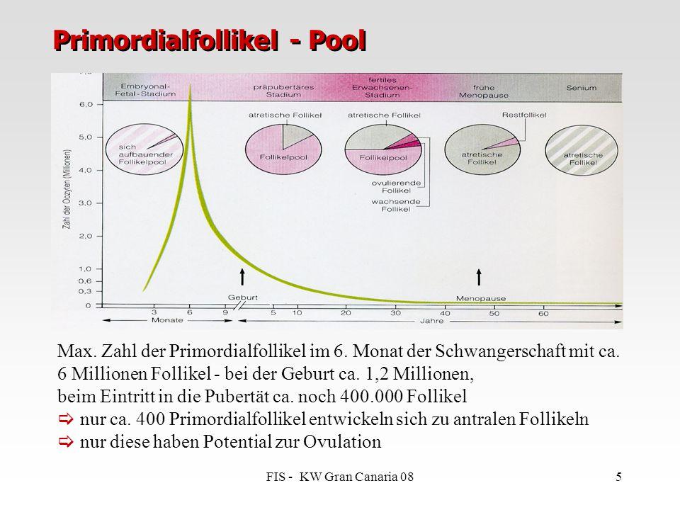 FIS - KW Gran Canaria 085 Primordialfollikel - Pool Max. Zahl der Primordialfollikel im 6. Monat der Schwangerschaft mit ca. 6 Millionen Follikel - be