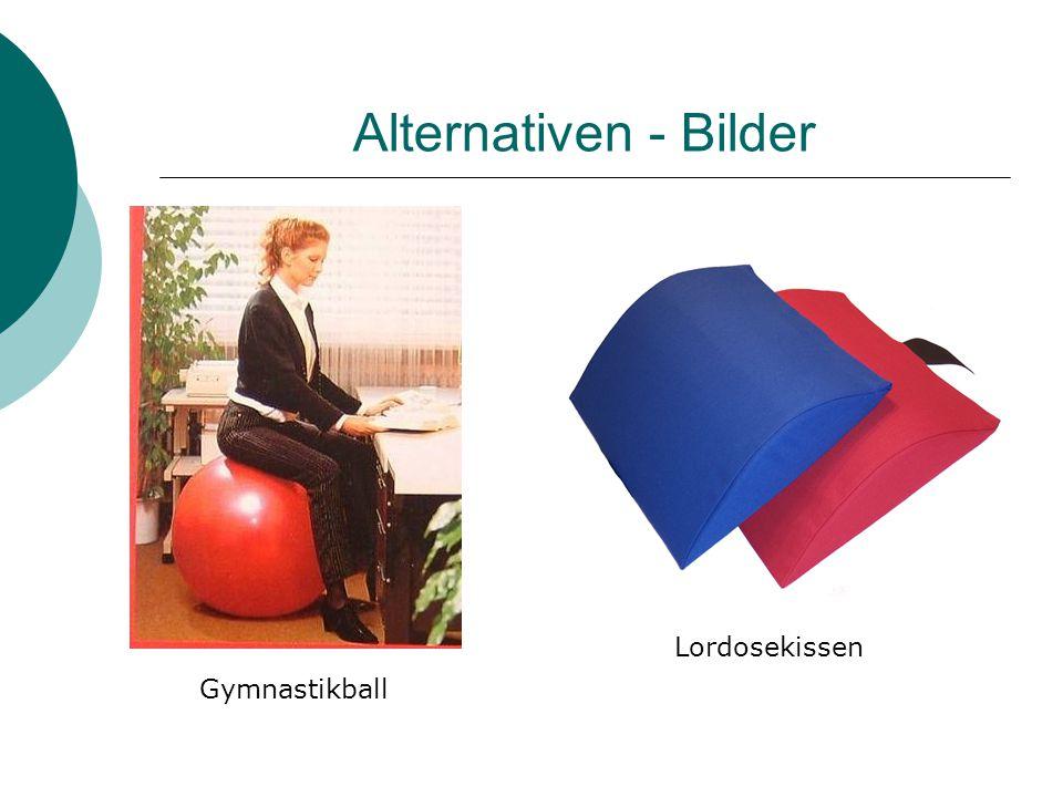 Alternativen - Bilder Gymnastikball Lordosekissen