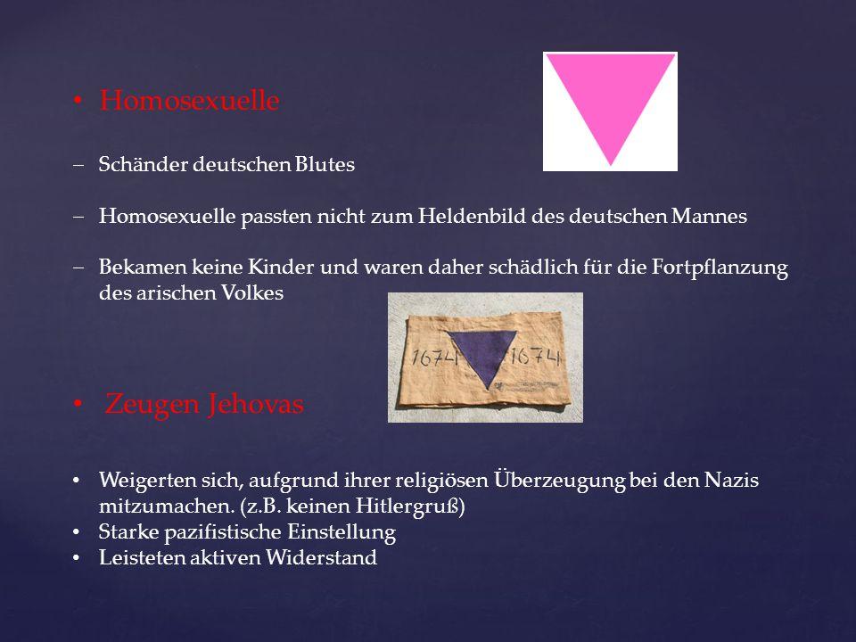 Homosexuelle  Schänder deutschen Blutes  Homosexuelle passten nicht zum Heldenbild des deutschen Mannes  Bekamen keine Kinder und waren daher schäd
