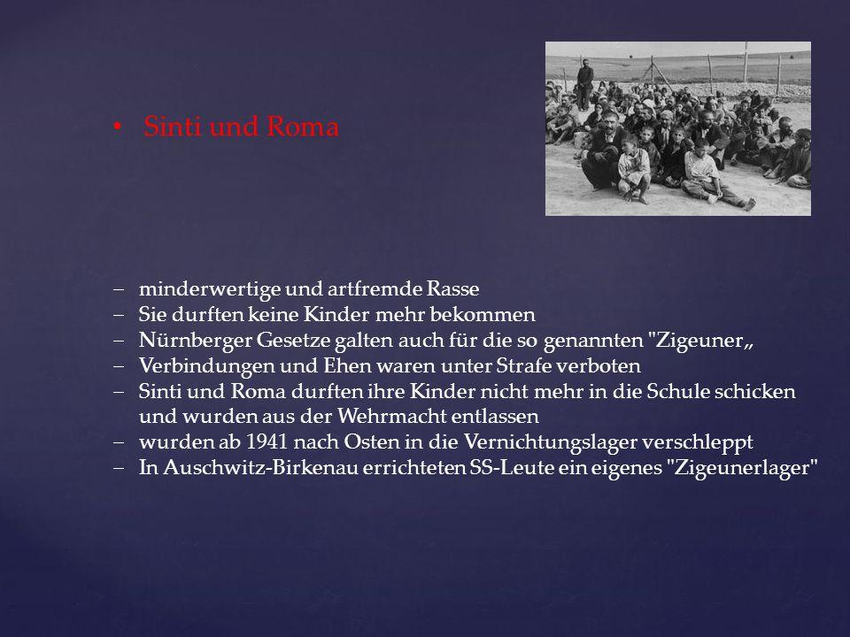 Sinti und Roma  minderwertige und artfremde Rasse  Sie durften keine Kinder mehr bekommen  Nürnberger Gesetze galten auch für die so genannten